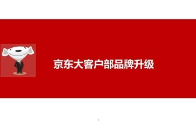 京东企业购品牌定位、形象升级项...