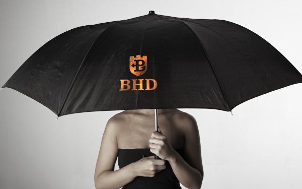 BHD标志设计