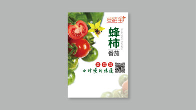 笠鮮生公司宣傳單設計