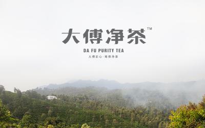 大傅凈茶包裝