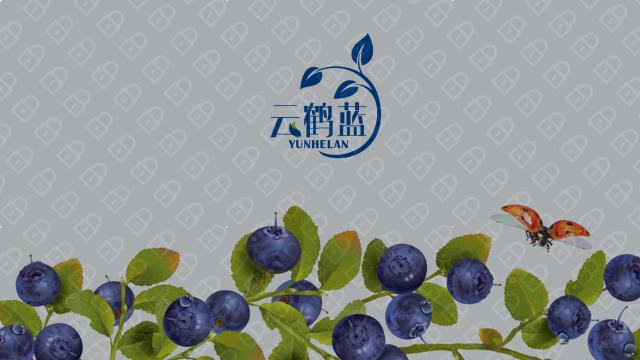 云鹤蓝包装标签设计入围方案3