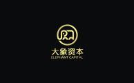 大象资本 汽车金融 logo设计 VI设计