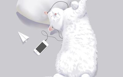 萌萌的猫(宠物品种:英短)