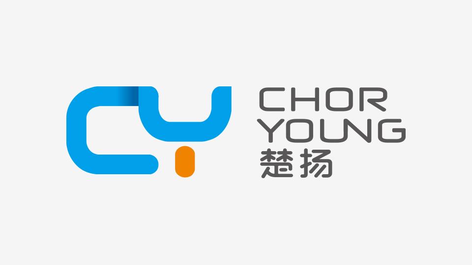 楚扬公司logo设计