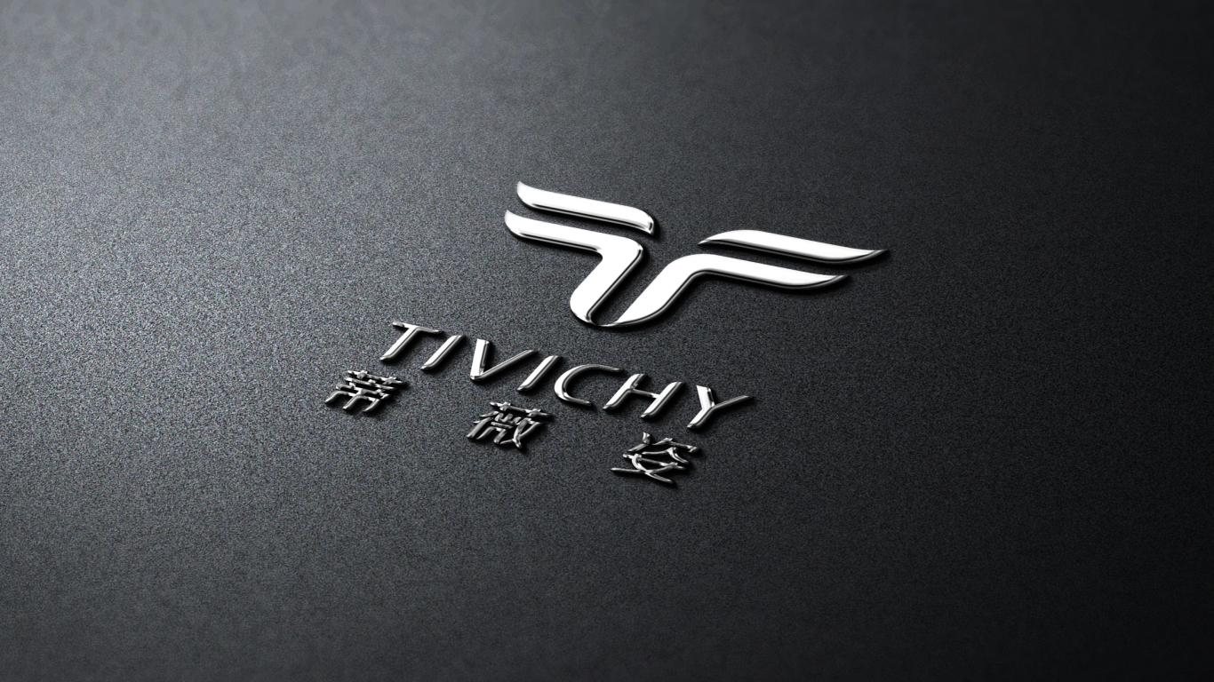 蒂薇姿美容品牌LOGO設計中標圖7