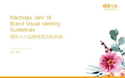 明年十六花果茶品牌命名、VI设计、品牌...