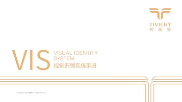蒂薇姿公司VI設計