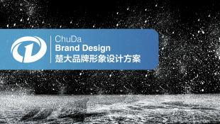 楚大机电公司VI设计