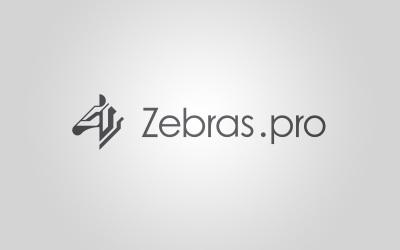 斑馬算力(Zebras.pro...