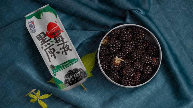 五色源黑莓飲料品牌包裝設計入圍方案0