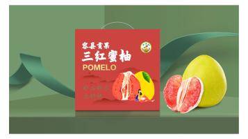 贡果柚高端蜜柚品牌包装设计
