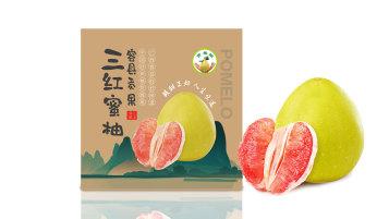 贡果柚蜜柚品牌包装设计