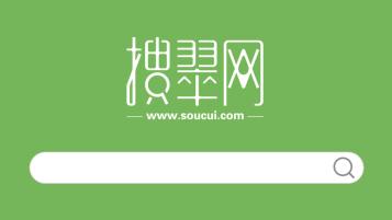 搜翠網珠寶品牌LOGO設計