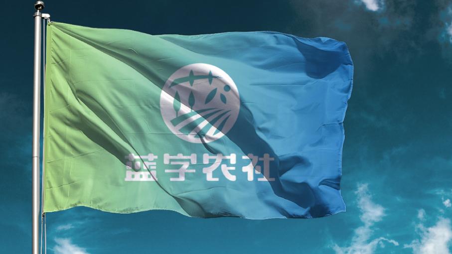 蓝字农社品牌LOGO设计中标图2