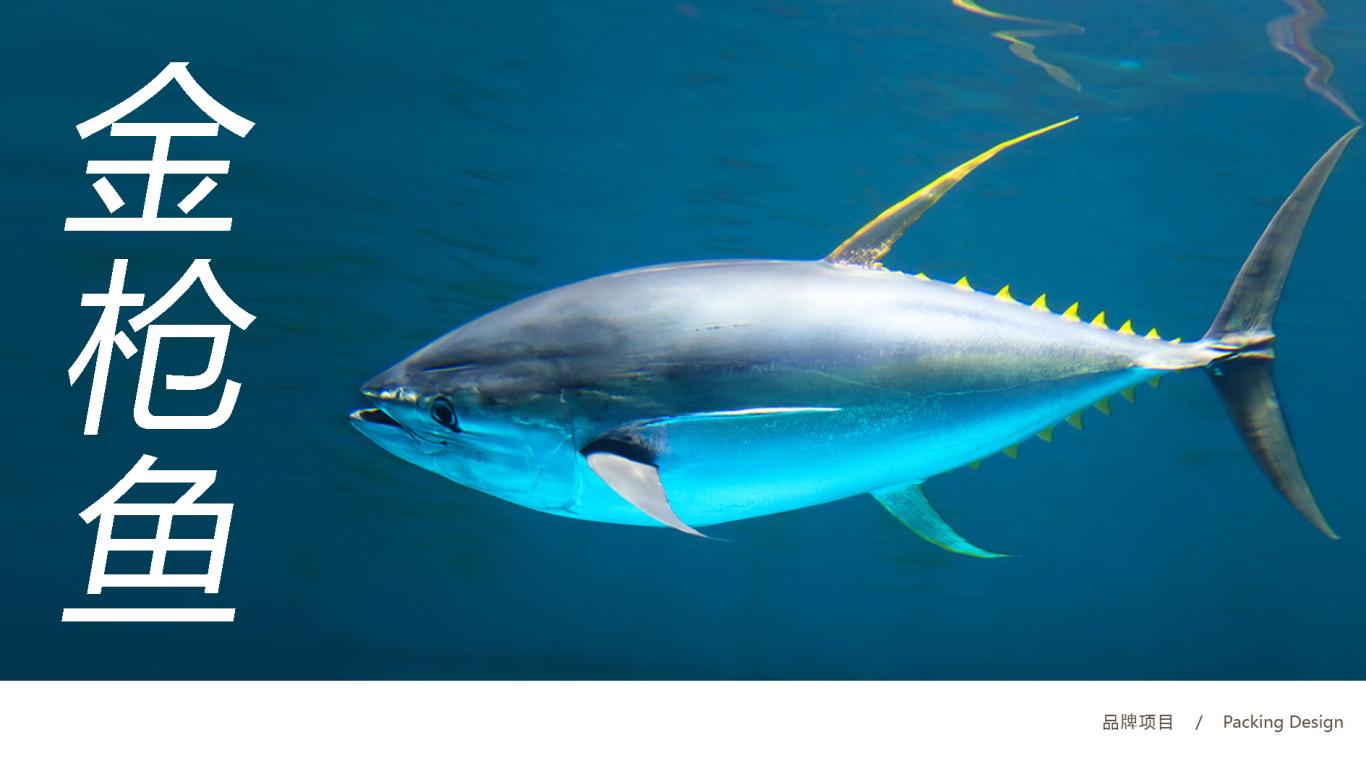青远渔品牌金枪鱼罐头包装设计中标图0