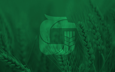 龍江農投集團logo設計
