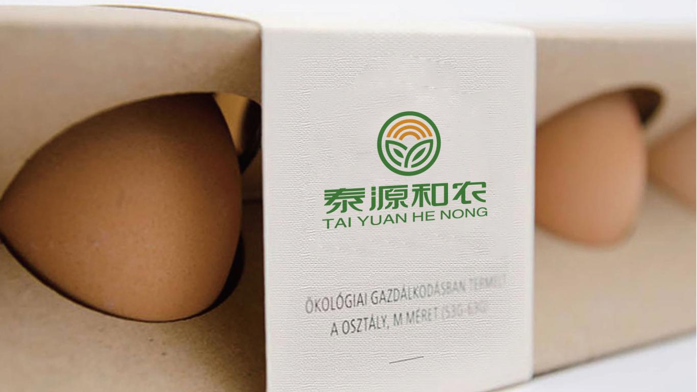 泰源和农生物科技公司LOGO设计中标图6