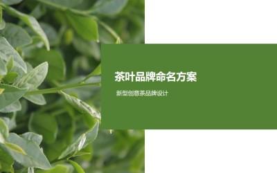 茶叶品牌命名方案