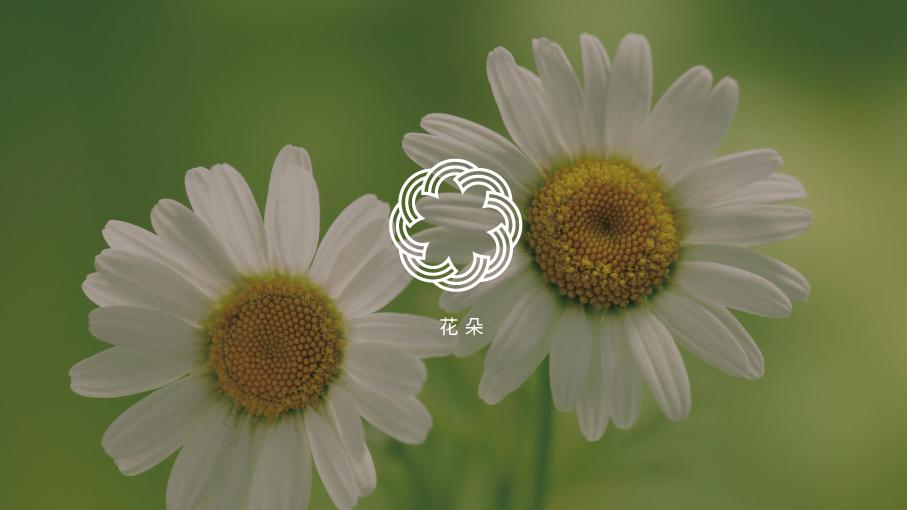 鲁谷梅朵地毯品牌LOGO设计中标图2