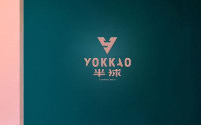 半球健身 品牌logo设计