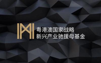 粵港澳國家戰略母基金VIS