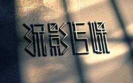 流影传媒logo项目设计