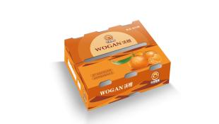 沙漠骆驼水果品牌包装设计