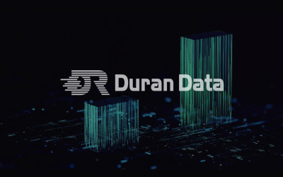 DR大数据logo项目设计