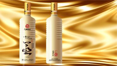 武功蒸泉酒品牌包装设计