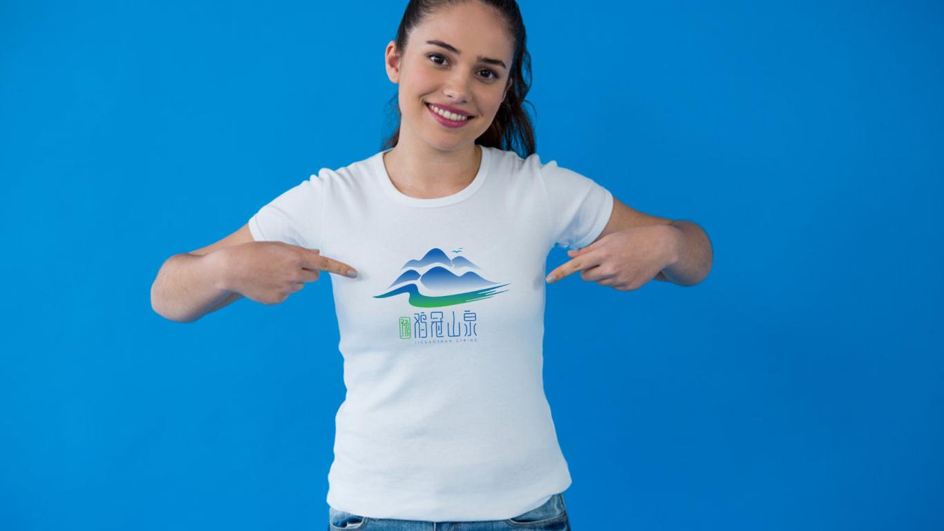豫雞冠山泉食品品牌LOGO設計中標圖8