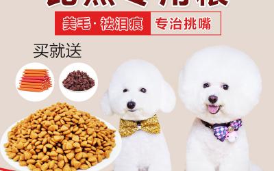 宠物粮详情页