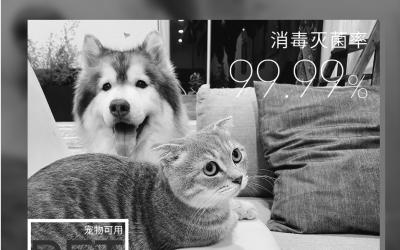宠物用消毒液海报设计