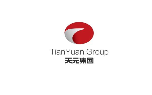 天元集团logo设计