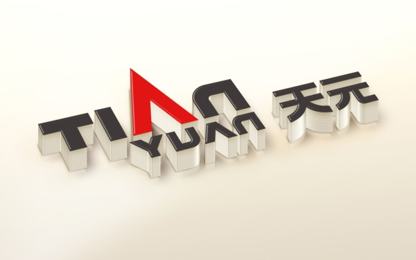 天元集团logo提案稿
