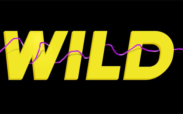 WILD潮牌電子煙品牌LOGO包裝設計