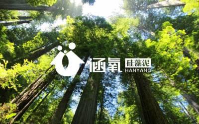 涵氧硅藻泥品牌手册设计