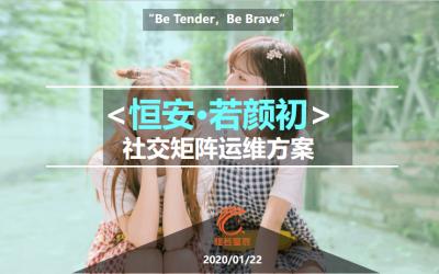恒安·若颜初社区营销提案