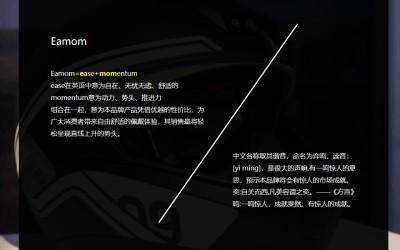 中英文头盔品牌命名方案