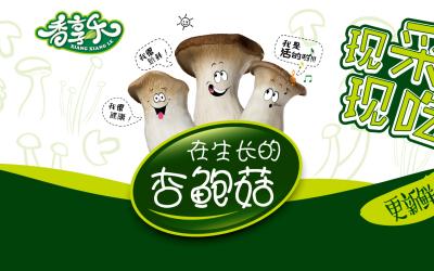 某食用菌 菌菇包装设计 标签设...