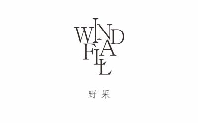 windfall野果logo设计