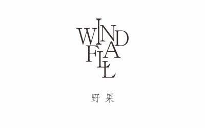 windfall野果logo設計