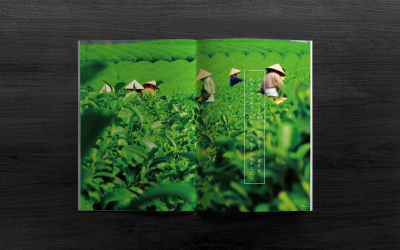 茗谦英德红茶画册