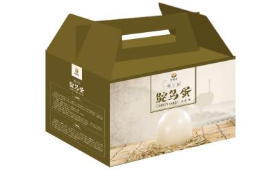 鸵鸟蛋包装盒