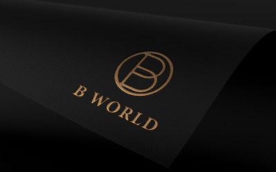 B world 金融公司 lo...