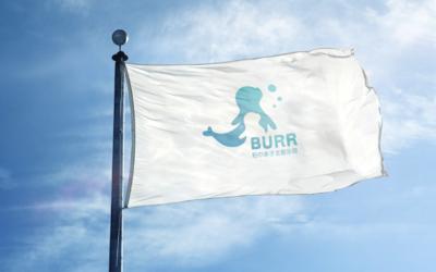 上海伯尔BURR品牌乐天堂fun88备用网站