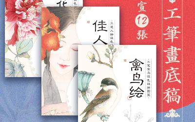 飞乐鸟 国画线稿纸