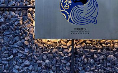 潜水培训机构logo设计