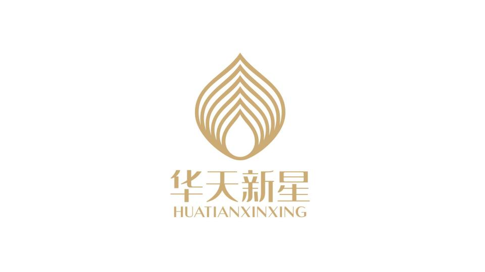 華天新星護膚品代理公司LOGO設計