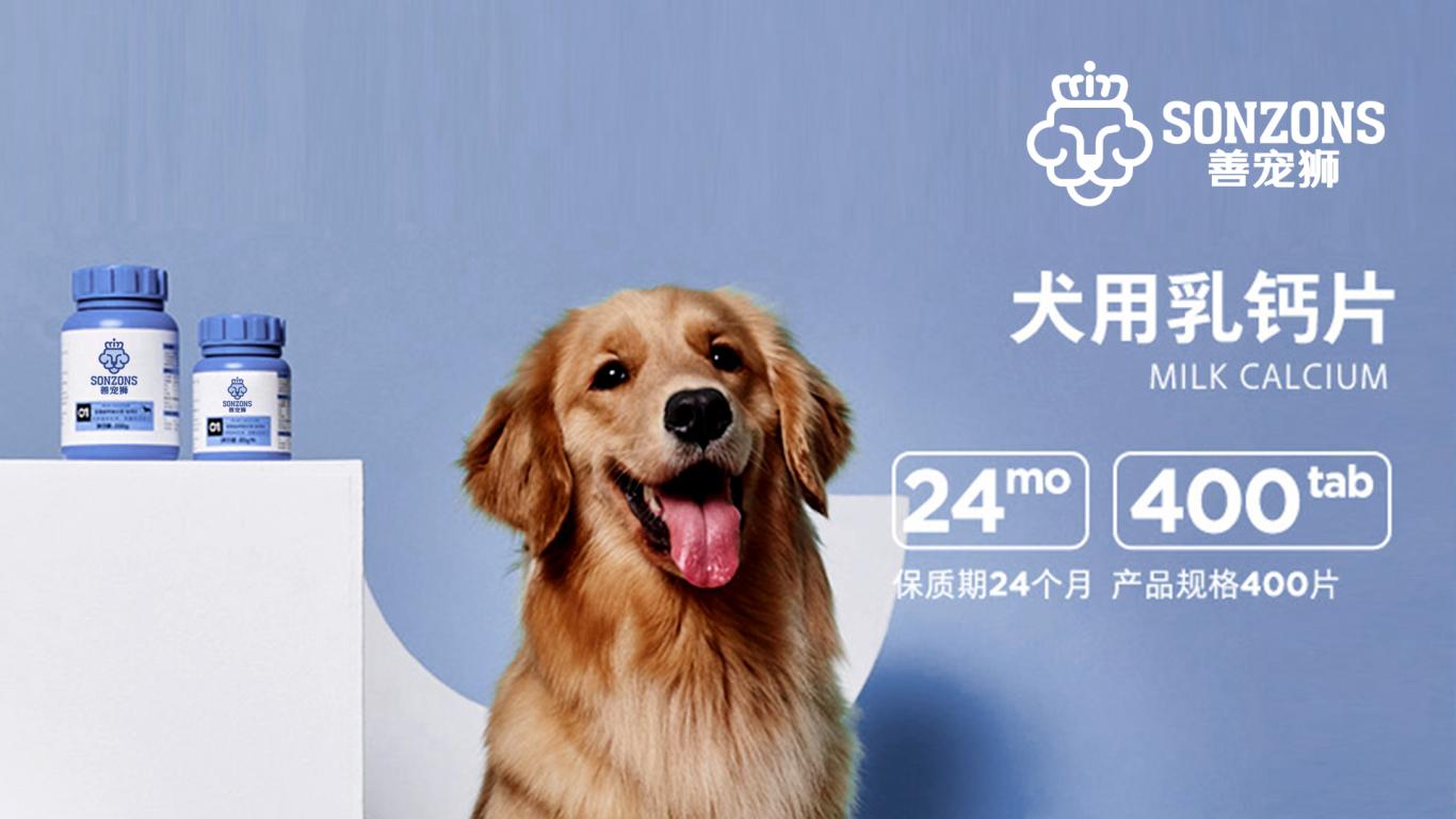 善寵獅寵物用具公司LOGO設計中標圖14