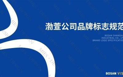 logo设计&品牌标志规范(部...